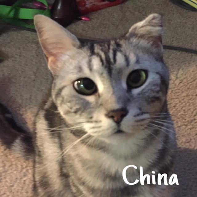 17 China – Copy