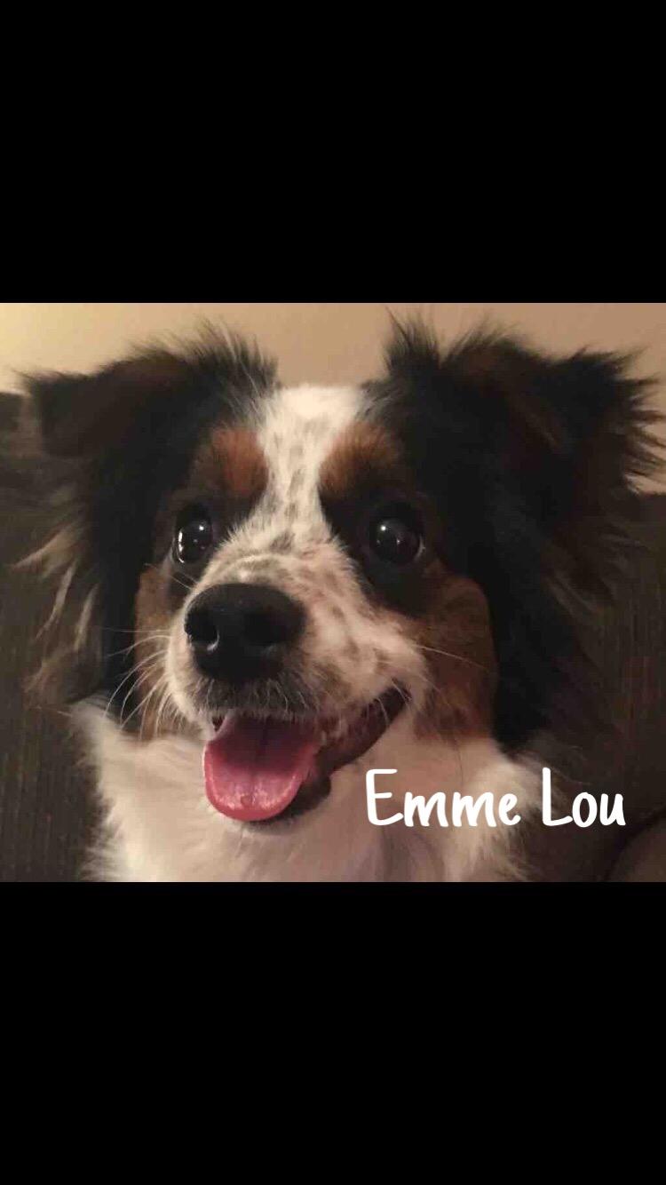 2 Emme Lou – Copy